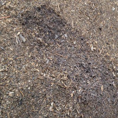 Nitrolized Sawdust